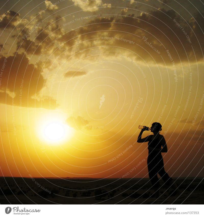 Durstlöscher trinken Erfrischung Wolken Dämmerung Sonnenuntergang Sommer Physik heiß trocken Dürre Ressource Getränk kühlen durstig Gegenlicht Silhouette gelb