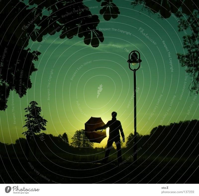 early morning | umbrella pt.4 Mensch Mann Natur Jugendliche Himmel Baum Sonne grün ruhig Blatt schwarz Wolken Ferne Farbe Lampe Wiese