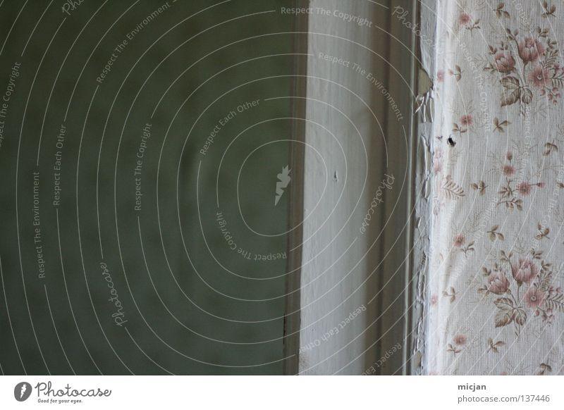 schick. alt grün Blume Haus Holz Tür Hintergrundbild Design trist retro Rose Bauwerk verfallen Tapete Rahmen Langeweile