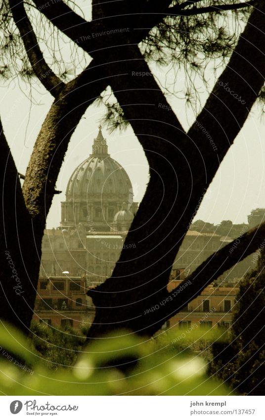 durchblick Rom Chiesa San Pietro Vatikan Petersdom Wetter heilig Katholizismus Baum Durchblick Park Hügel Licht Gotteshäuser monte pincio ewige stadt