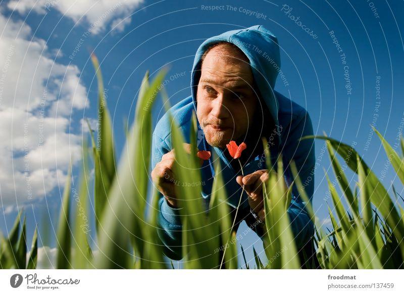 Sie liebt mich... Himmel Natur Mann Jugendliche blau grün Sommer Pflanze rot Blume Gesicht Wiese Tod Wärme Gras Frühling