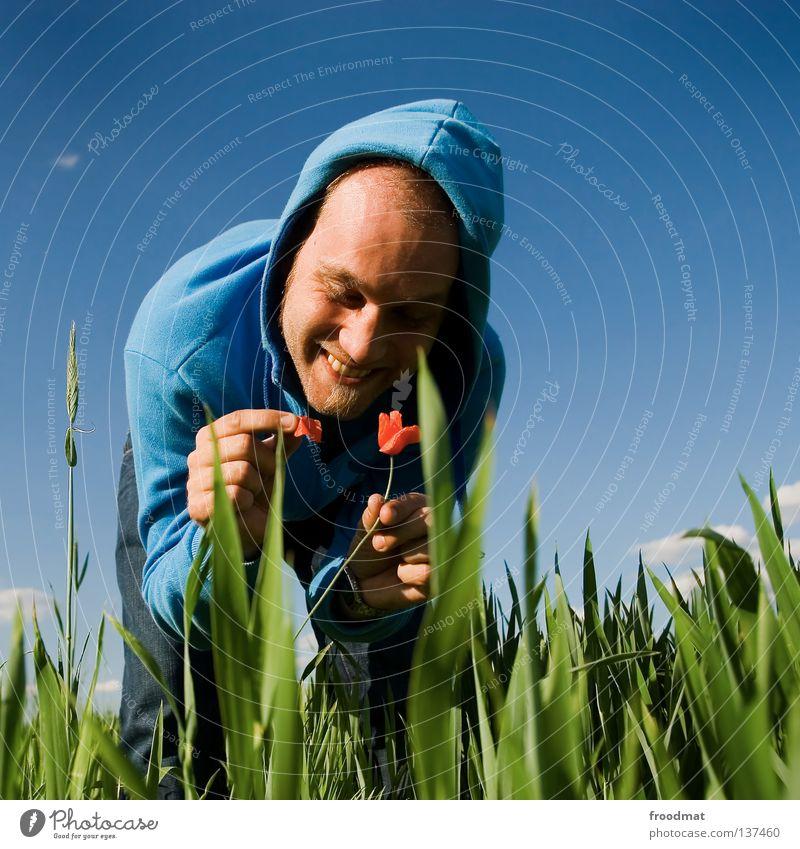 sie liebt mich nicht... sie liebt mich... Himmel Natur Mann Jugendliche blau grün Sommer Pflanze rot Blume Freude Gesicht Wiese Tod Wärme Gras