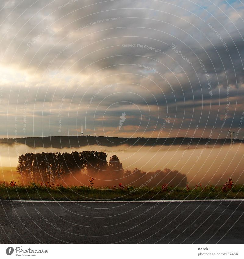 Da hinten ist Rapunzel! Nebel Wiese Baum Märchenwald Wolken geheimnisvoll geiles wetter Wetter Turm Feldsalat Straße Wolkenmeer Tal Freude Angst lustig