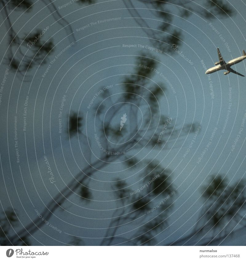 11. Mai, Anschlag auf die Natur Himmel blau Ferien & Urlaub & Reisen grau Denken Luft Graffiti Angst Flugzeug fliegen Beginn Verkehr Eisenbahn Luftverkehr