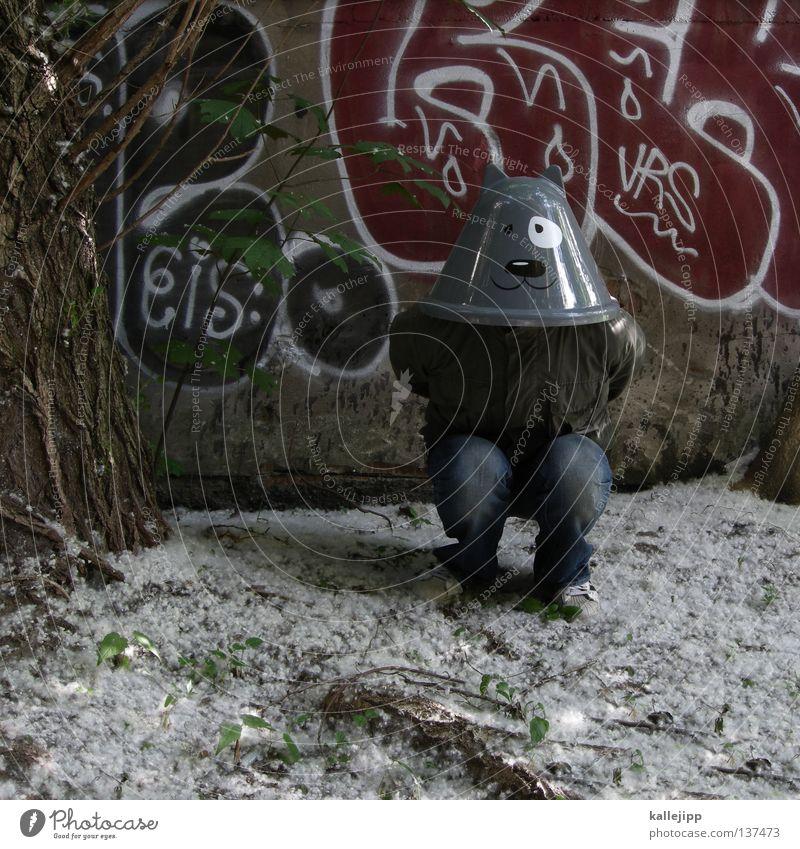 katzeklo Katze Futter Tier Humor Karneval Baum Pflanze Vorhang Abdeckung Baustelle Show Musical Comic Mann Mensch Lifestyle Wand Schwanz Mauer Haus Hinterhof