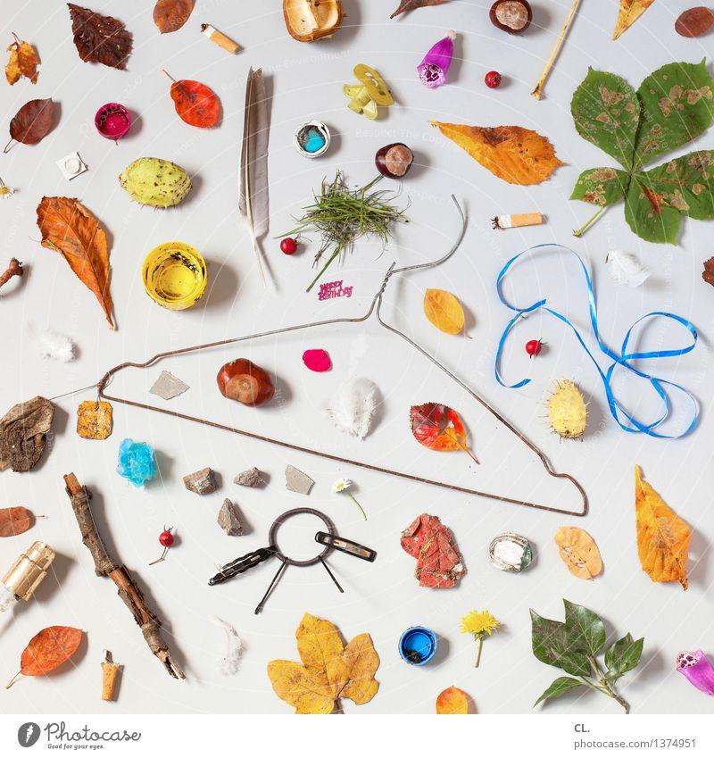 das glück liegt auf der straße Blatt Blüte Müll Zigarette Kleiderbügel Geschenkband Super Stillleben