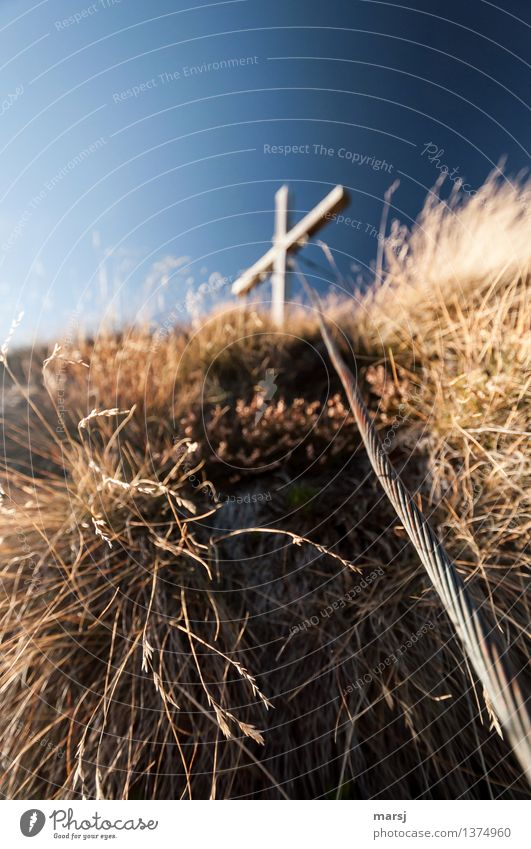 Halt und Sicherheit Natur Himmel Wolkenloser Himmel Herbst Gras Stahl Kreuz Stahlkabel Gipfelkreuz stark blau Schutz Sorge Sehnsucht Einsamkeit Farbfoto