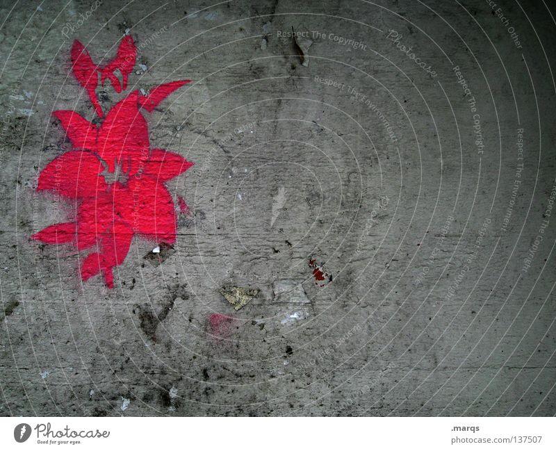 Lurid Blume Blüte Pflanze Wachstum Blühend rosa rot grau Wand dreckig Straßenkunst beschmiert Symbole & Metaphern Schablone Silhouette grell Graffiti