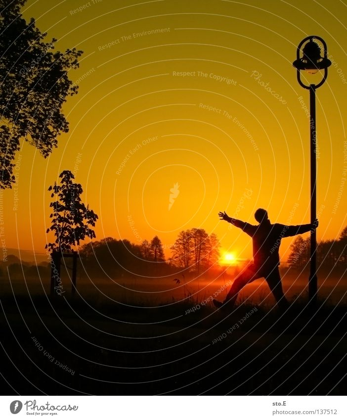 early morning | frühaufsteher pt.2 Mensch Mann Natur Jugendliche Himmel Baum Sonne ruhig Blatt schwarz Wolken gelb Ferne Farbe Lampe Wiese