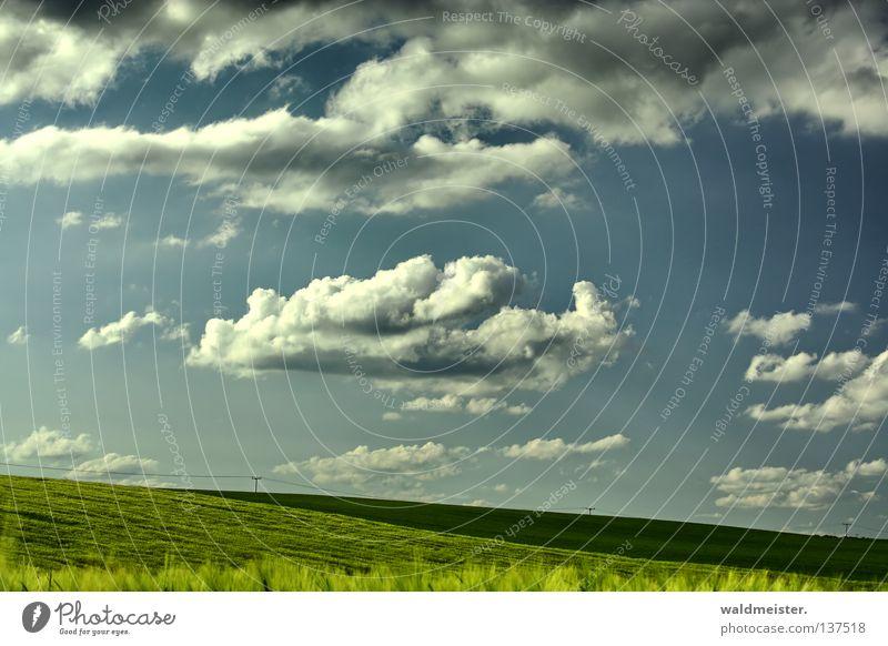 Mecklenburger Land Natur Himmel Sommer Wolken Ferne Wiese Landschaft Feld Landwirtschaft Mecklenburg-Vorpommern