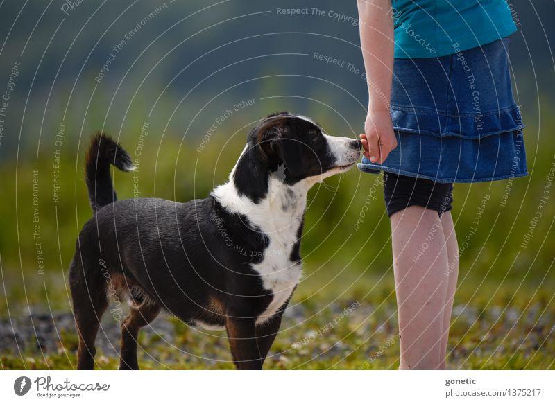 Freundschaft für's Leben! Kind Mädchen Hand 1 Mensch 3-8 Jahre Kindheit Umwelt Natur Landschaft Pflanze Tier Haustier Hund Stimmung Glück Warmherzigkeit