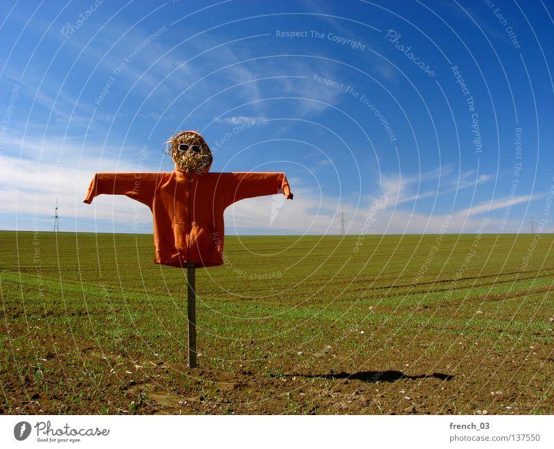 want to be pretty Vogelscheuche hässlich Kapuze Feld Pullover Stroh Sonnenbrille Wolken Himmel Brille Holz Geister u. Gespenster gruselig Einsamkeit erschrecken