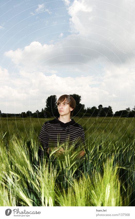 Astrein Posing Mann Jugendliche schön Wolken Erwachsene Ferne Frühling Feld Körperhaltung Getreide Junger Mann Halm atmen Örtlichkeit Ähren Photo-Shooting