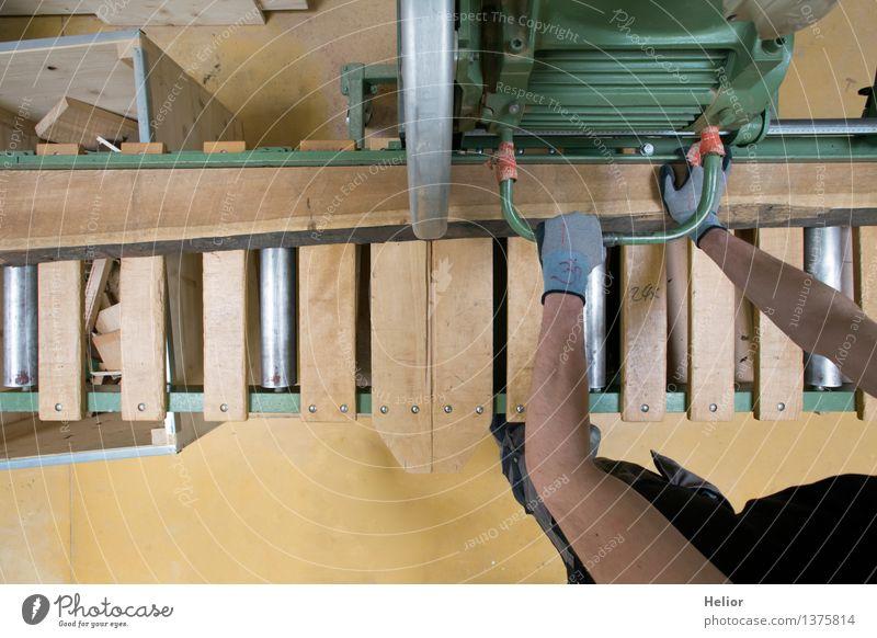 Carpenter 1 Mensch grün Hand schwarz Holz grau braun Metall Arbeit & Erwerbstätigkeit maskulin Kraft Arme gefährlich Finger Baustelle Beruf