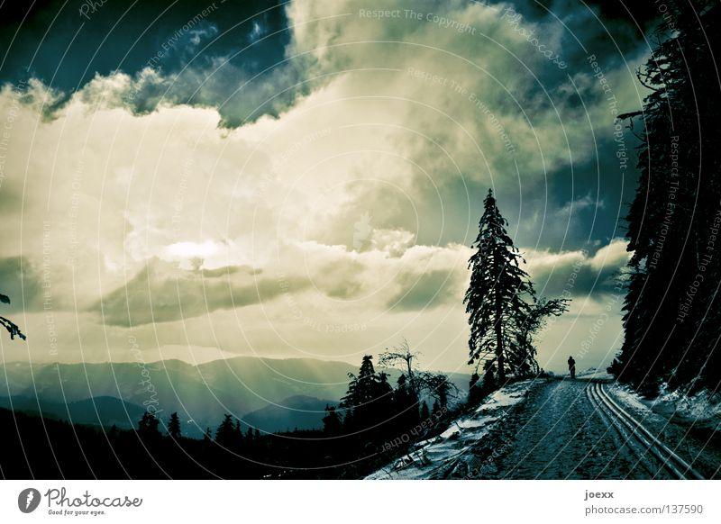 300 Ziele abgelegen losgehen schlechtes Wetter Wolken biblisch laufen Einsamkeit Denken Horizont Skilanglauf Lebenslauf Licht Loipe Nadelwald Philosophie ruhig