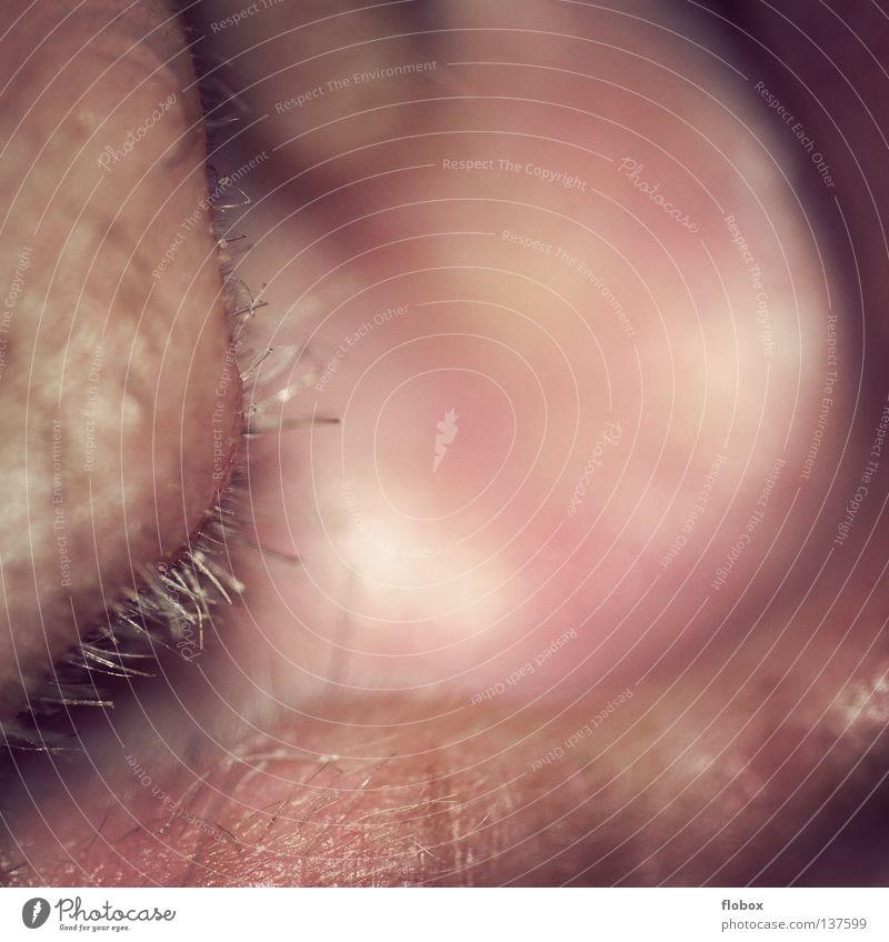 Parts VII Mensch Mann Haare & Frisuren dreckig maskulin Ohr hören Ton rechnen Sinnesorgane Druck Geräusch wahrnehmen Gehörsinn entzünden Schall