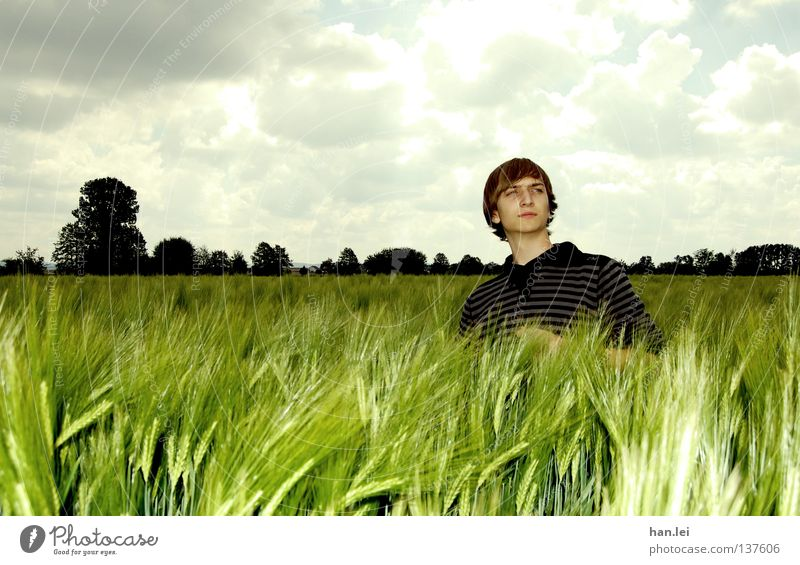 Posing Deluxe Himmel Mann Jugendliche schön Baum Wolken Erwachsene Ferne Landschaft Frühling Feld maskulin Körperhaltung Getreide Junger Mann Bioprodukte