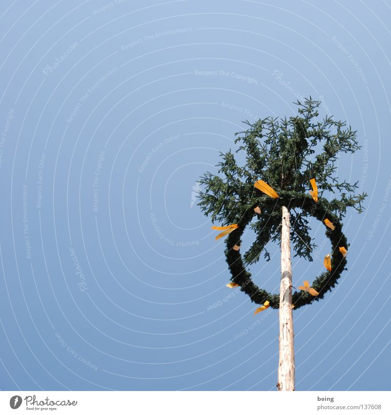 Setzen Sie Ihre Liebe in Szene: Fotoshooting für zwei 199,- € Frühling Feste & Feiern Kunst Kultur Vergänglichkeit Verkehrswege Bayern Tradition Kranz Maibaum