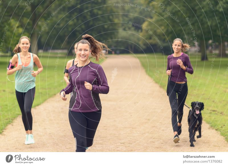 Frau Hund Sommer Erholung Erwachsene Sport Lifestyle Menschengruppe Zusammensein Freundschaft Park Aktion Textfreiraum Lächeln Fitness sportlich