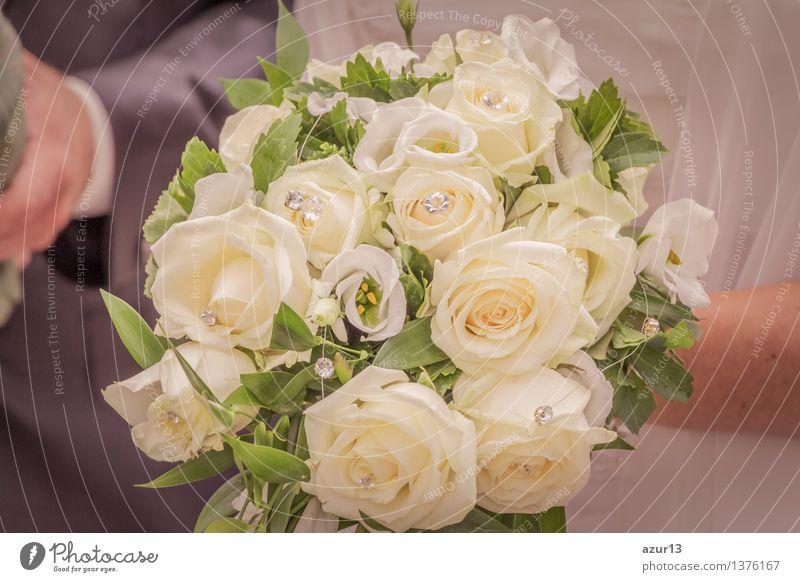 Brautstrauß der Braut mit Blumen Rosen in weiß bei Hochzeit Mensch Pflanze schön Sommer Freude gelb Liebe Blüte Gefühle feminin Hintergrundbild Glück Party