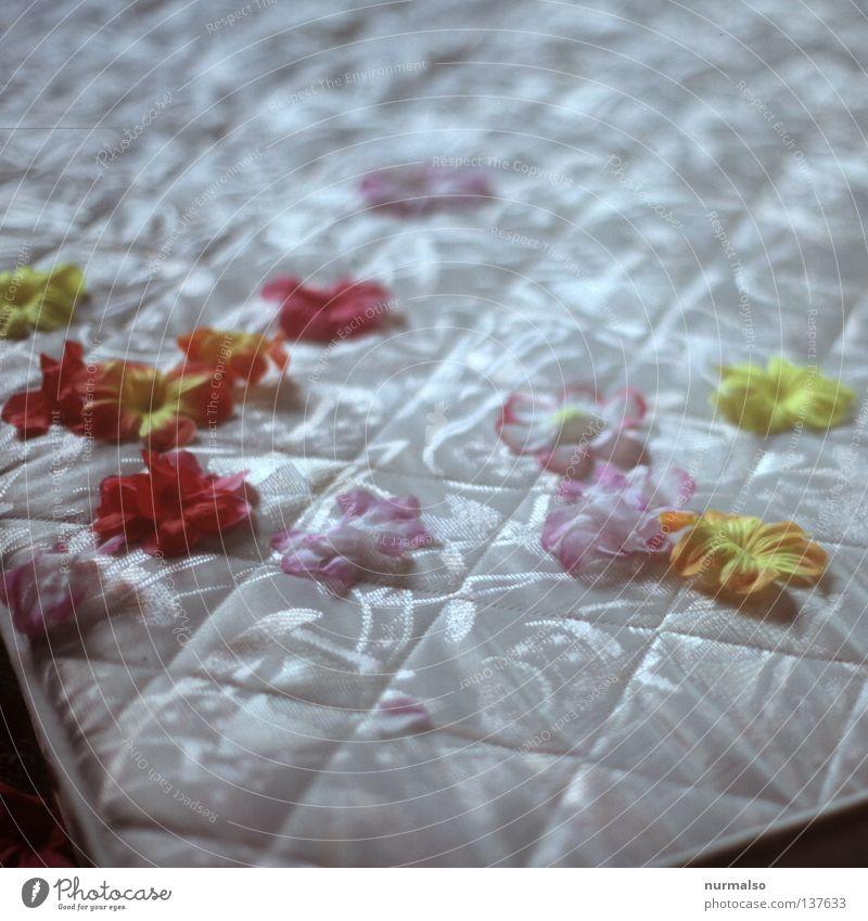 Mittagsschlaf Erholung träumen Kunst schlafen Platz Bett Frieden einfach liegen Freizeit & Hobby gut Metallfeder Ente Decke fein Gans