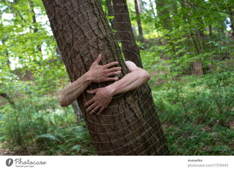 Umarmung Mann Erwachsene Arme Natur Baum Wald Umarmen sportlich Leidenschaft Umwelt Naturgewalt Leben Lebensfreude Nackte Haut Hand Liebe Kraft Sommer