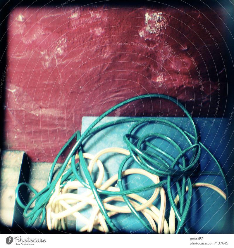 Schlauch vor der Hütte Wasser Pflanze Leben Garten Arbeit & Erwerbstätigkeit Treppe Rasen Konzentration analog drehen Handwerk Rahmen durcheinander Gartenarbeit Schlauch gießen
