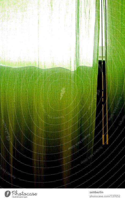 Hitze Sommer Sonne Fenster Wärme Wohnung Häusliches Leben Sicherheit Schutz Physik Vorhang Gardine Wetterschutz Stubenhocker Abschattung Hauptsaison