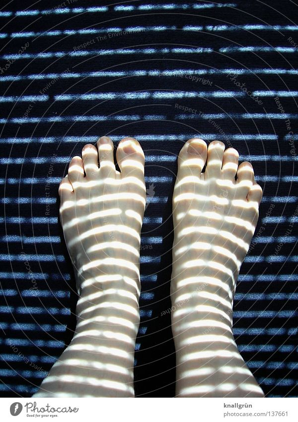 Morgens, bevor ich die Jalousie hochziehe... Frau blau dunkel Fuß Beine hell Beleuchtung stehen Streifen obskur bleich seltsam Aussehen Zehen Teppich horizontal