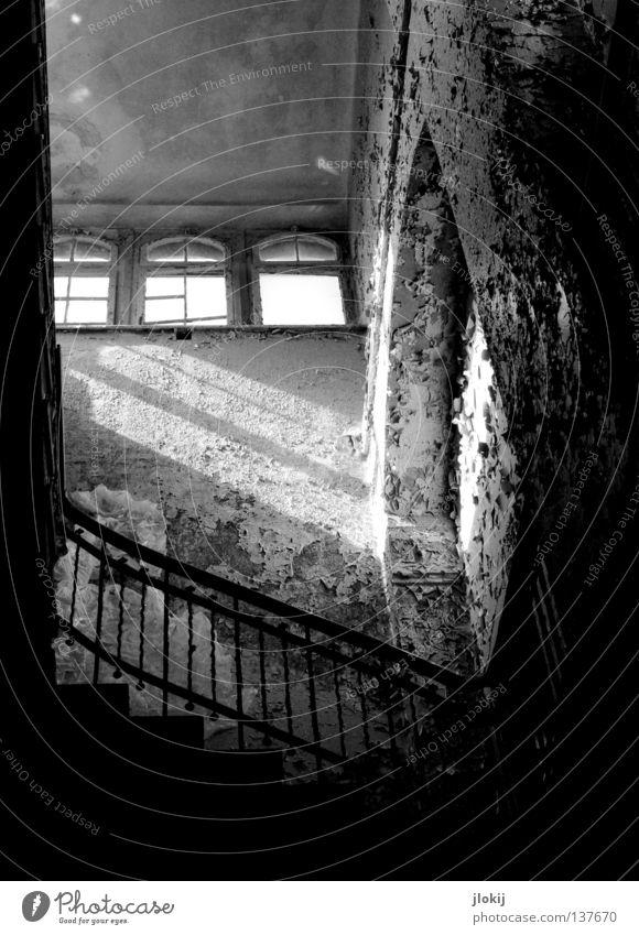 Up to the light Schuhe Damenschuhe schwarz Beton verfallen Putz zerbröckelt Haus Flur Treppenhaus Gebäude gehen Verfall Ruine Heilstätte Licht Streifen planen