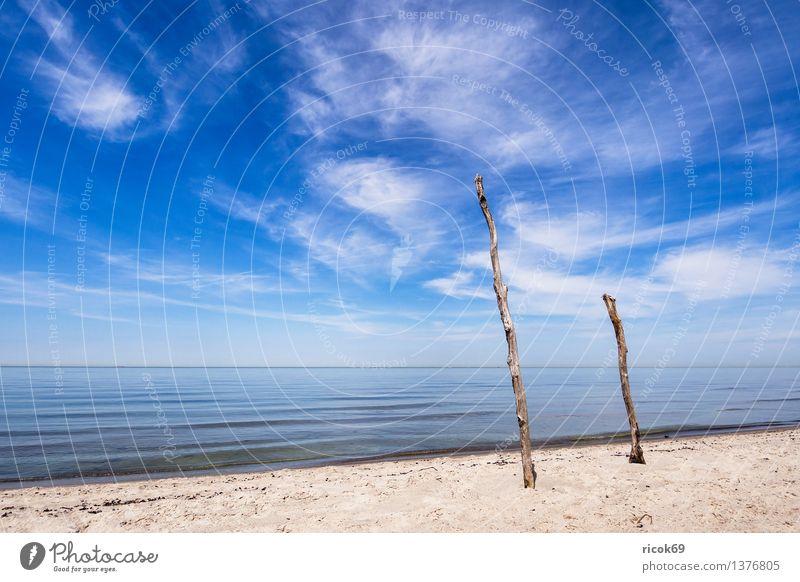 Weststrand Natur Ferien & Urlaub & Reisen Wasser Erholung Meer Wolken Strand Küste Sand Tourismus Idylle Ast Romantik Ostsee Mecklenburg-Vorpommern Darß