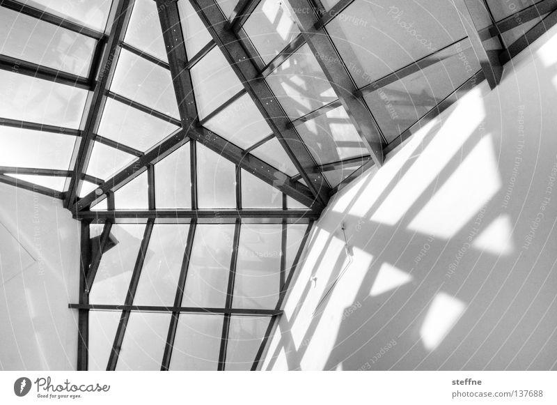 Elternhaus Licht Muster Haus Fenster Aussicht Dach Wintergarten streben chaotisch Dreieck Wand Mauer HDR schwarz weiß Detailaufnahme Schwarzweißfoto Schatten