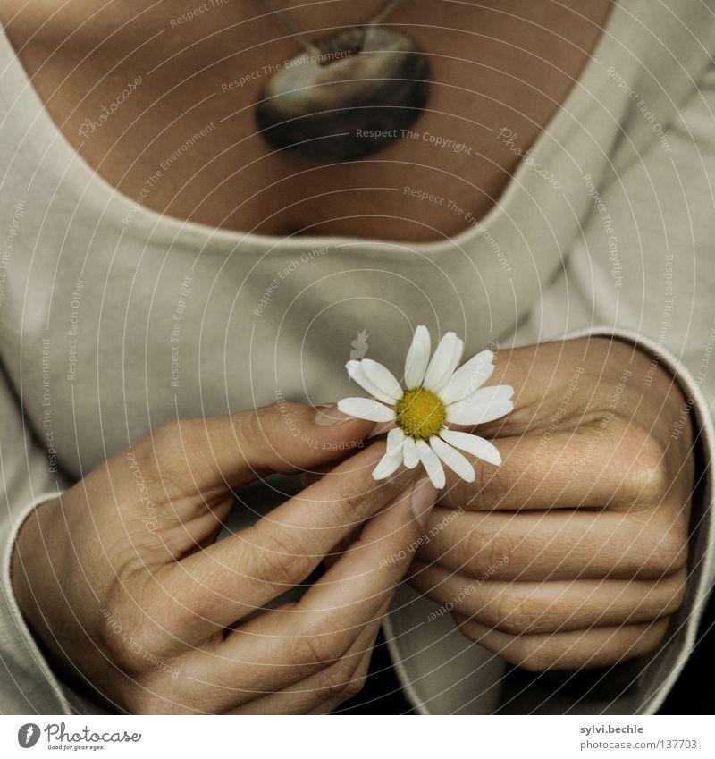 at the beginning Farbfoto Gedeckte Farben Außenaufnahme Detailaufnahme Tag Oberkörper Vorderansicht schön Leben Sommer Frau Erwachsene Brust Hand Blume Blüte