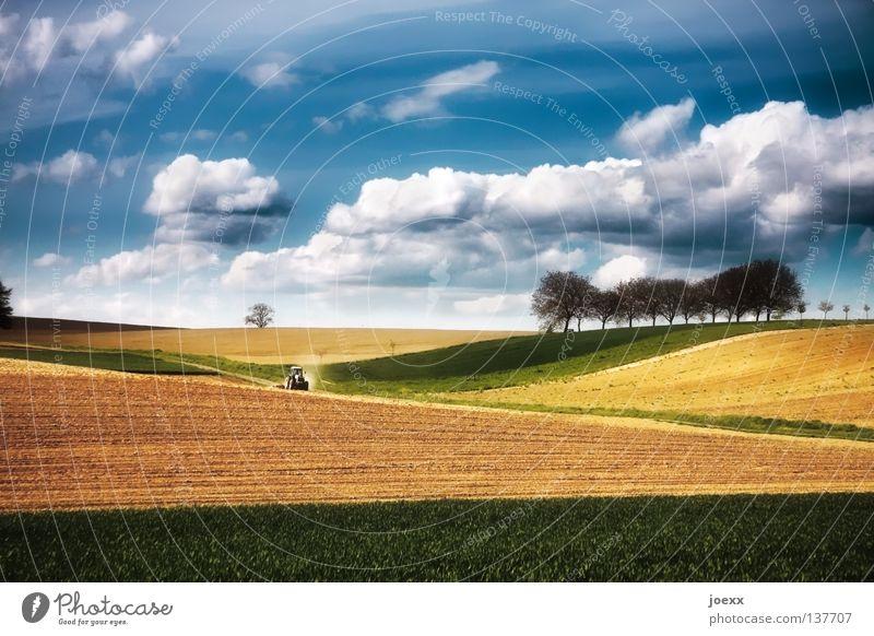 Traktor fährt auf farbintensiven Feldern mit Wolkenhimmel Ackerbau Ackerboden Landwirtschaft Baum Baumreihe Erholung Trekker grün Horizont Hügel