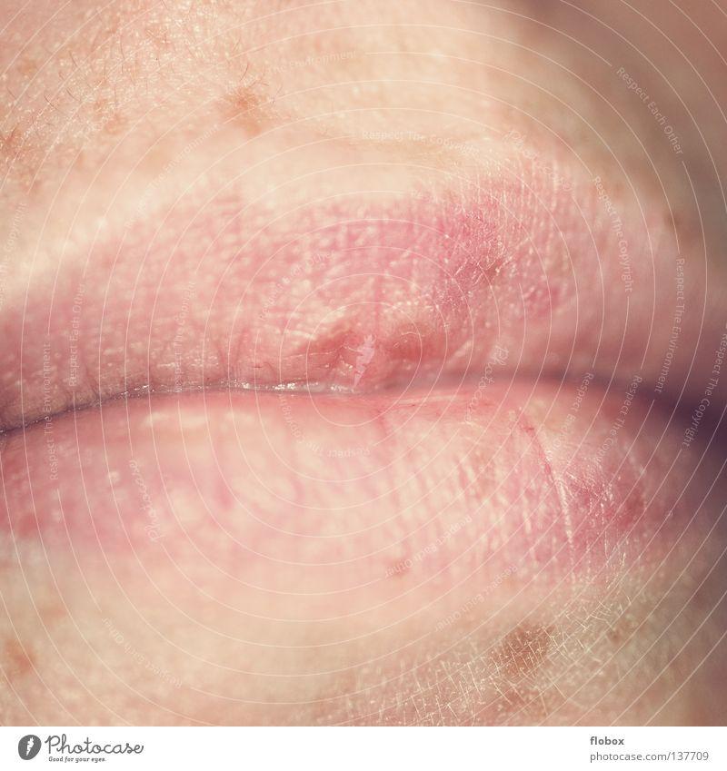 Mündchen Frau natürlich Mund Haut Lippen zart Bildausschnitt Anschnitt Leberfleck Körperteile Organ Herpes Gesichtsausschnitt Oberlippe Frauenmund Unterlippe
