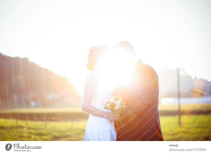 leuchtend Junge Frau Jugendliche Junger Mann Paar Partner Erwachsene 2 Mensch 18-30 Jahre Umwelt Natur Landschaft Frühling Sommer Schönes Wetter Zusammensein