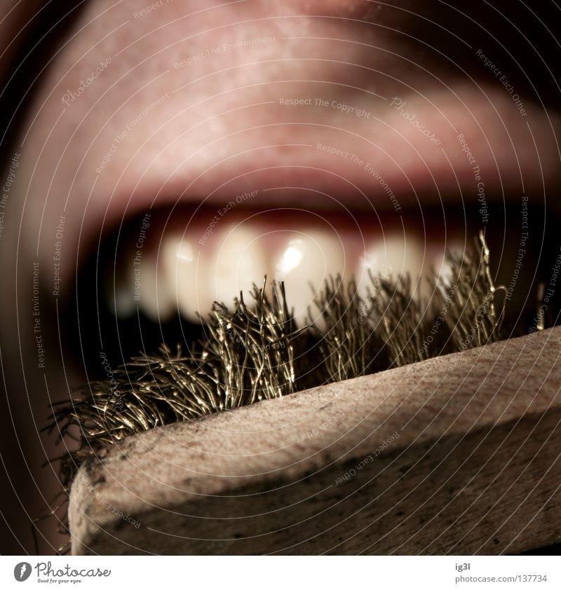 HardcoreZahnbelag Mensch Natur weiß Ferne Tod lachen Gesundheit Angst Mund leer kaputt Brücke Reinigen Bad Zähne Lippen