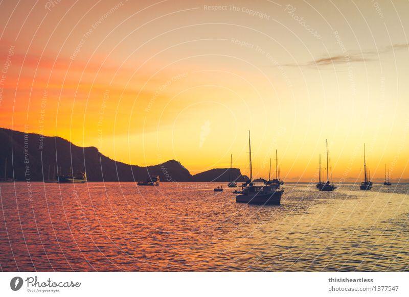 Sundown in Bequia Himmel Wasser Meer Ferne gelb Traurigkeit Küste Horizont träumen Zufriedenheit Idylle gold Insel Hügel Unendlichkeit Sehnsucht