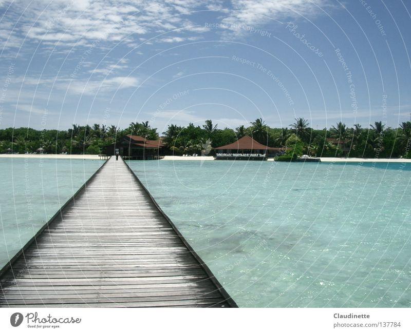 Connection Himmel Meer Strand Ferne Brücke Verbindung Palme Malediven