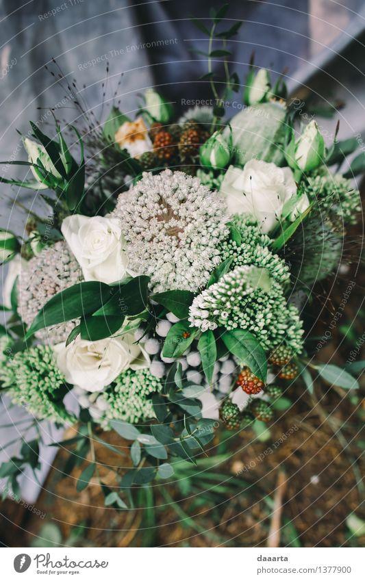 Hochzeit Bouquette 2 Natur Pflanze Sommer Blume Freude Wald Umwelt Leben Gefühle Gras feminin Stil Lifestyle Freiheit Stimmung Design