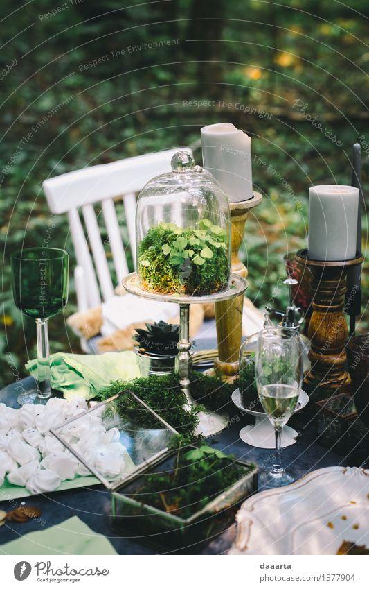 Pflanze Baum Blume Freude Leben Innenarchitektur Stil Lifestyle Feste & Feiern Stimmung Design wild Freizeit & Hobby Dekoration & Verzierung elegant Glas