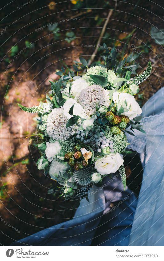 Hochzeit Bouquette Natur Pflanze schön Blume Landschaft Freude Wald Umwelt Leben Gras Stil Feste & Feiern Lifestyle Stimmung Party Sand