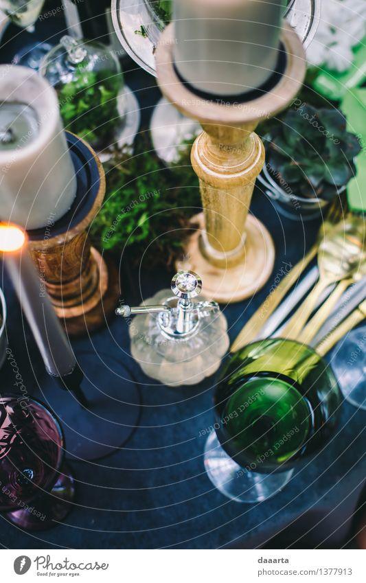 Tabelleneinstellung 4 Pflanze Blume Freude Wärme Leben Innenarchitektur Gras Stil Lifestyle Freiheit Lampe Stimmung Design wild Freizeit & Hobby