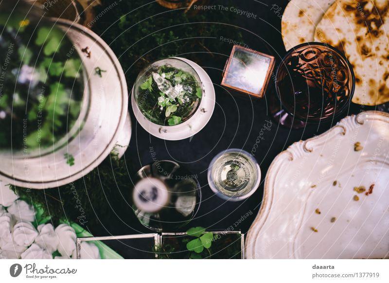Pflanze Blume Blatt Freude Leben Innenarchitektur Stil Lifestyle Feste & Feiern Freiheit Stimmung Party Design Freizeit & Hobby Dekoration & Verzierung elegant