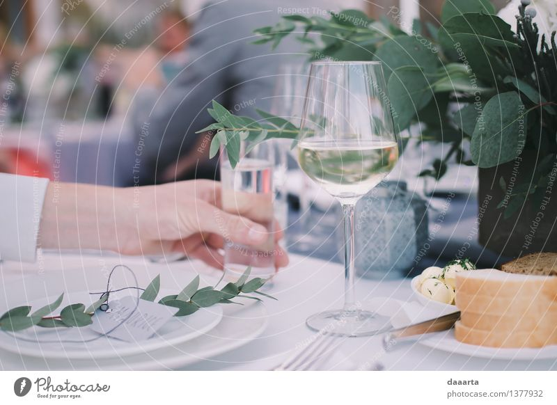 Wasser Blume Blatt Freude Leben Innenarchitektur Stil Glück Lifestyle Feste & Feiern Freiheit Lebensmittel Stimmung Party Freizeit & Hobby