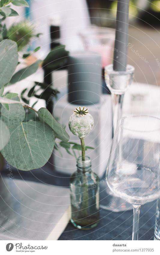 Pflanze Blume Freude Leben Innenarchitektur Gras Stil Lifestyle Feste & Feiern Freiheit Stimmung Party Design wild Freizeit & Hobby Dekoration & Verzierung