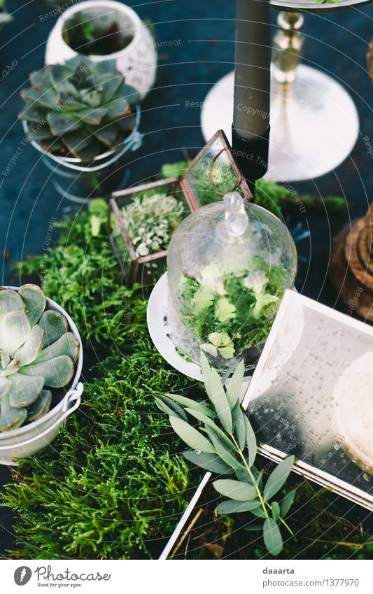 Stimmung grün Lifestyle elegant Stil Design Freude schön Leben harmonisch Freizeit & Hobby Ausflug Abenteuer Freiheit Sommer Traumhaus Dekoration & Verzierung
