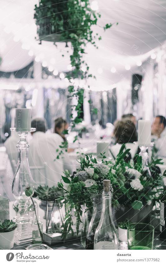 Pflanze Erholung Blume Blatt Freude Leben Innenarchitektur Stil Feste & Feiern Lifestyle Freiheit Stimmung Freizeit & Hobby Dekoration & Verzierung elegant