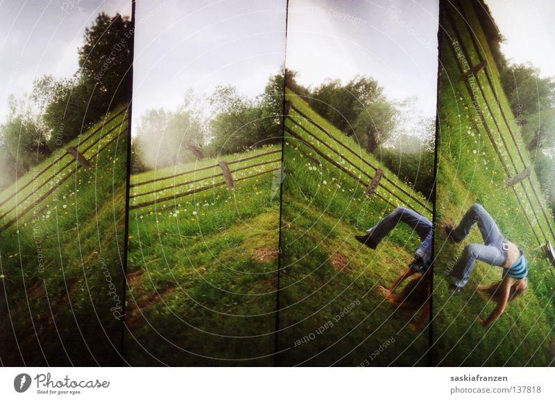 L O M O Lomografie 4 Teilung drehen Drehung Bewegung Wiese Baum Zaun Gras Wolken grün Sommer beweglich biegen Turnen vierteilig Wandel & Veränderung Perspektive