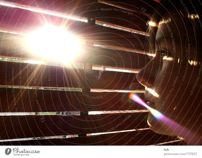 Guten Morgen, guten Morgen Erwartung Jalousie frisch erfrischend Tau Licht Lichteinfall Sonnenstrahlen Sonnenlicht Sonne Sonnenuntergang Mädchen Sonnenaufgang